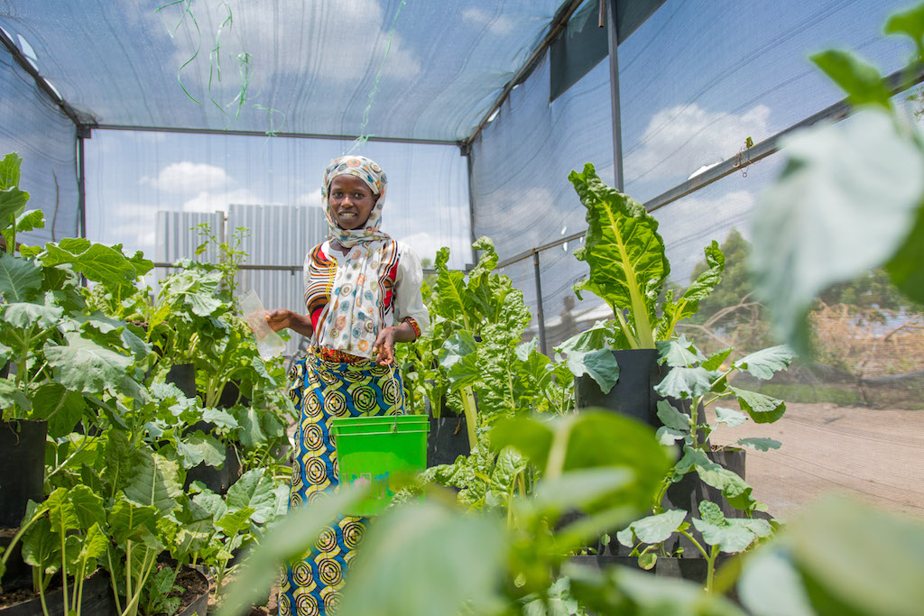 Refugee farming in Turkana
